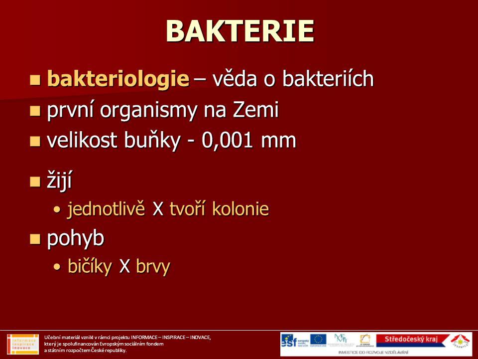 BAKTERIE bakteriologie – věda o bakteriích bakteriologie – věda o bakteriích první organismy na Zemi první organismy na Zemi velikost buňky - 0,001 mm
