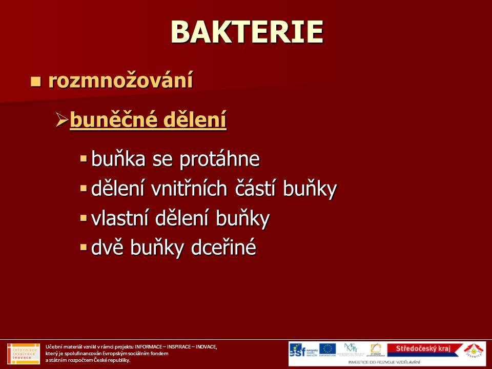 Rozmnožování bakterií Učební materiál vznikl v rámci projektu INFORMACE – INSPIRACE – INOVACE, který je spolufinancován Evropským sociálním fondem a státním rozpočtem České republiky.
