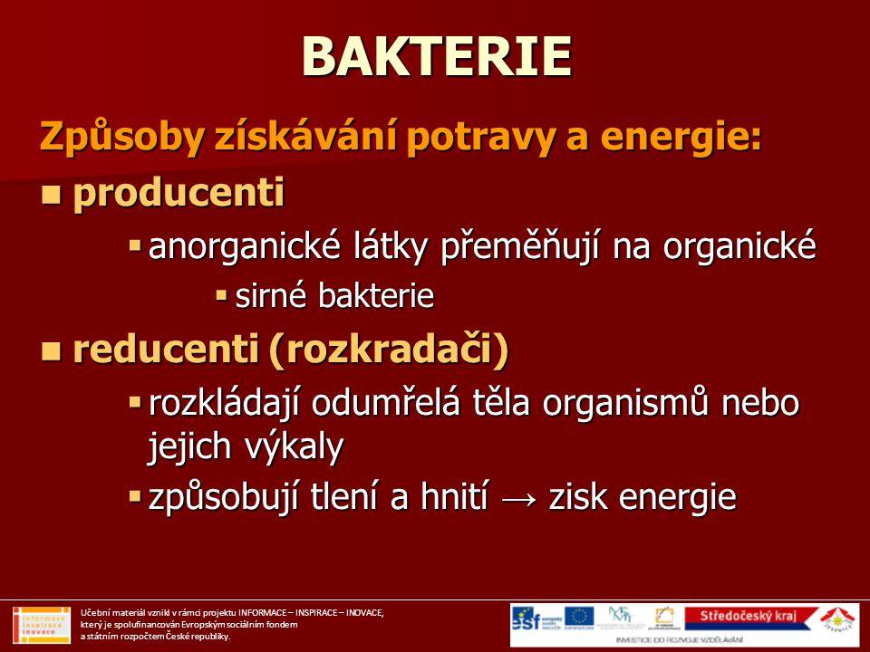 BAKTERIE Způsoby získávání potravy a energie: producenti producenti  anorganické látky přeměňují na organické  sirné bakterie reducenti (rozkradači)