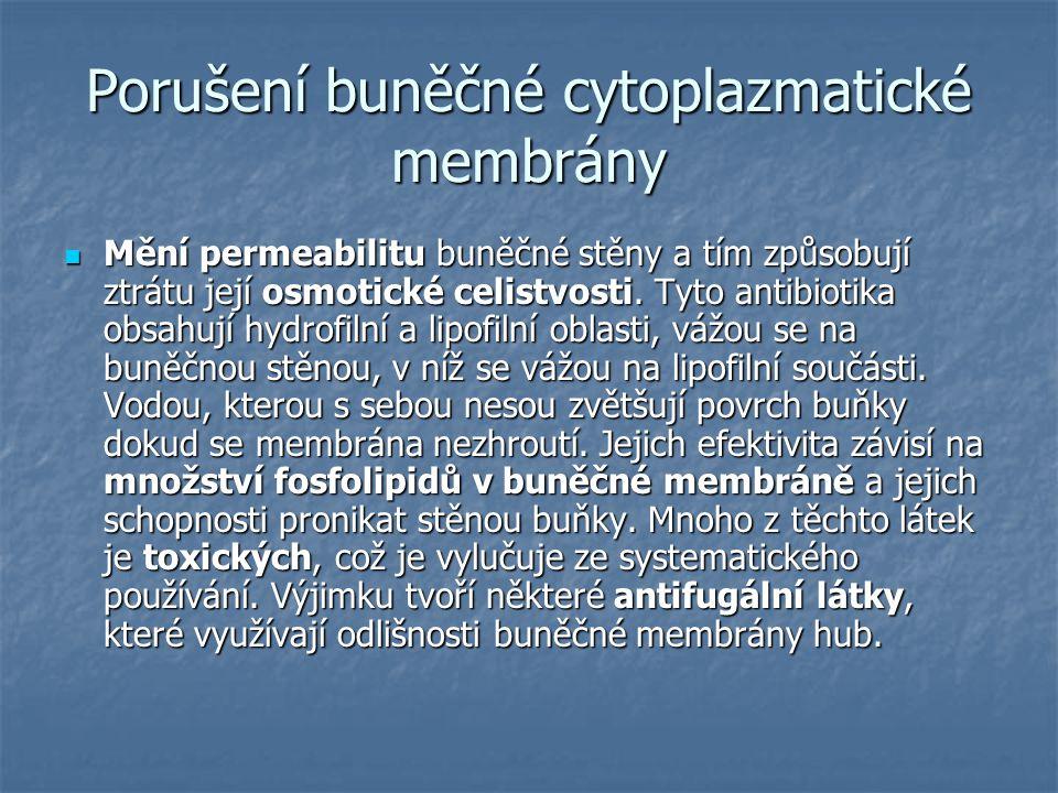 Porušení buněčné cytoplazmatické membrány Mění permeabilitu buněčné stěny a tím způsobují ztrátu její osmotické celistvosti. Tyto antibiotika obsahují