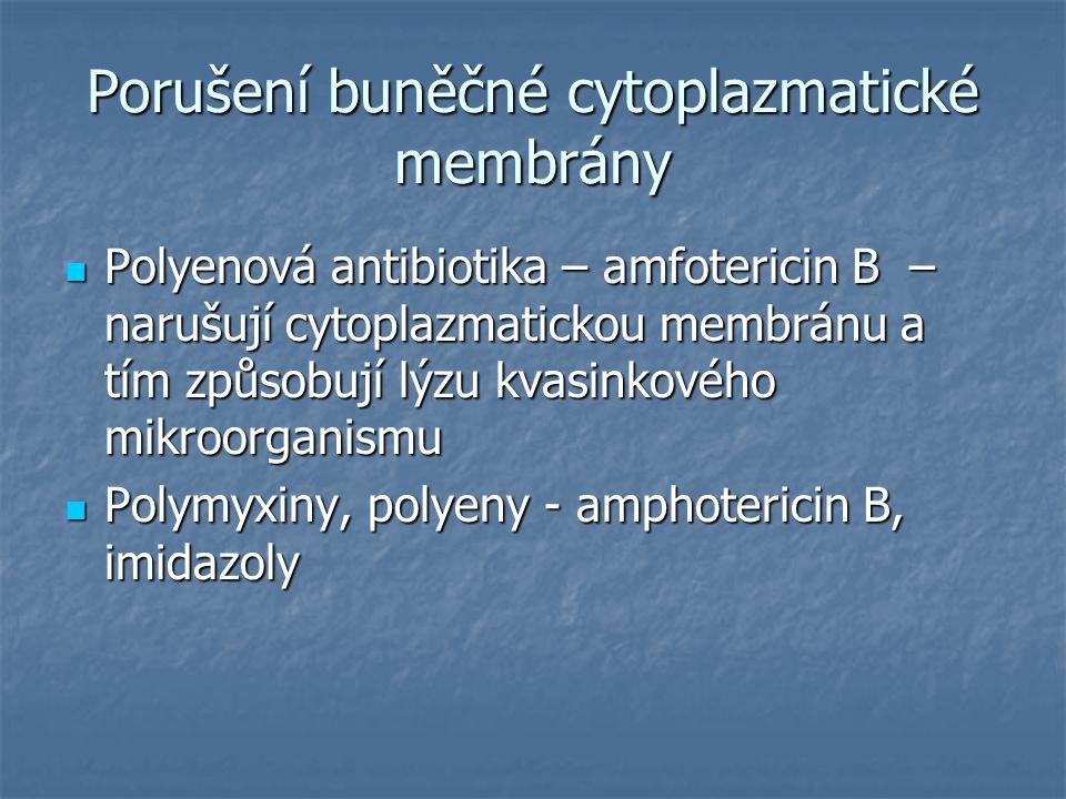 Porušení buněčné cytoplazmatické membrány Polyenová antibiotika – amfotericin B – narušují cytoplazmatickou membránu a tím způsobují lýzu kvasinkového