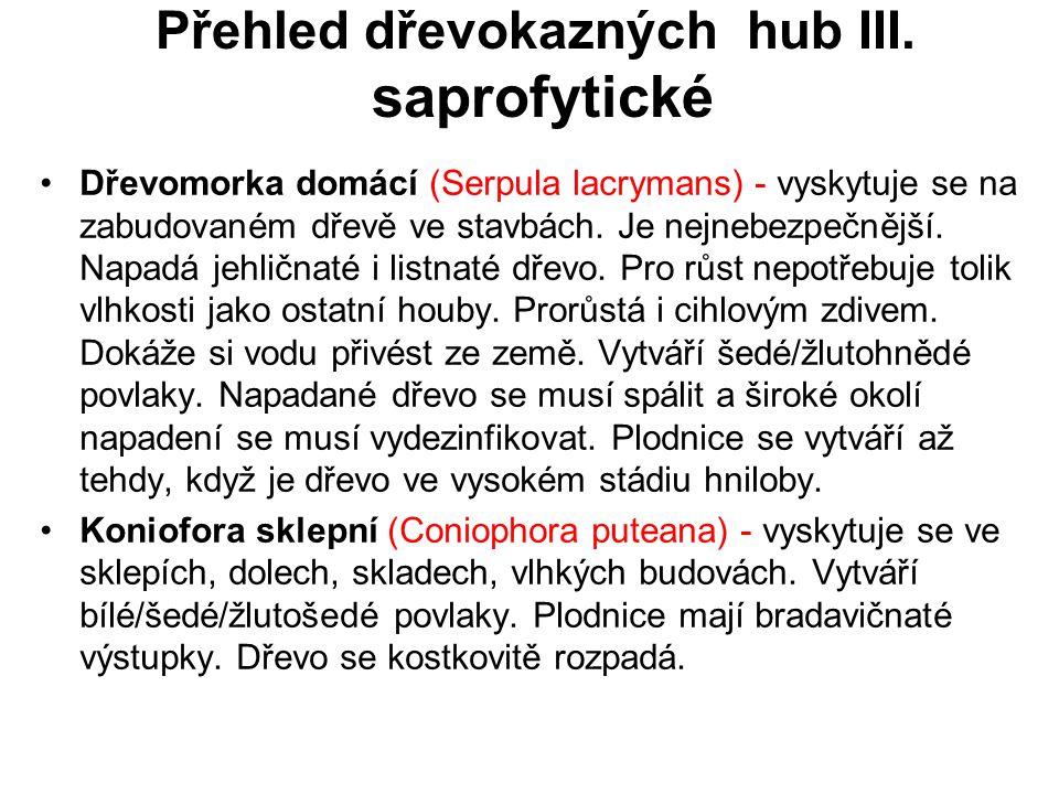 Přehled dřevokazných hub III. saprofytické Dřevomorka domácí (Serpula lacrymans) - vyskytuje se na zabudovaném dřevě ve stavbách. Je nejnebezpečnější.