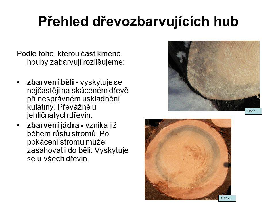 Přehled dřevozbarvujících hub Podle toho, kterou část kmene houby zabarvují rozlišujeme: zbarvení běli - vyskytuje se nejčastěji na skáceném dřevě při