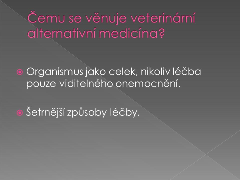  Organismus jako celek, nikoliv léčba pouze viditelného onemocnění.  Šetrnější způsoby léčby.