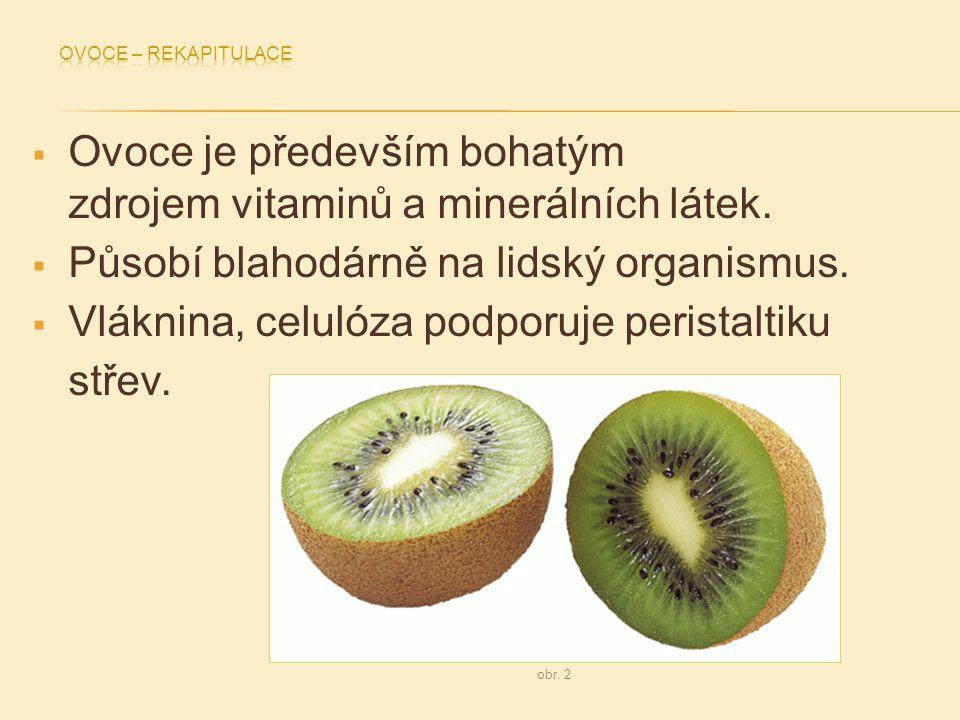  Ovoce je především bohatým zdrojem vitaminů a minerálních látek.  Působí blahodárně na lidský organismus.  Vláknina, celulóza podporuje peristalti