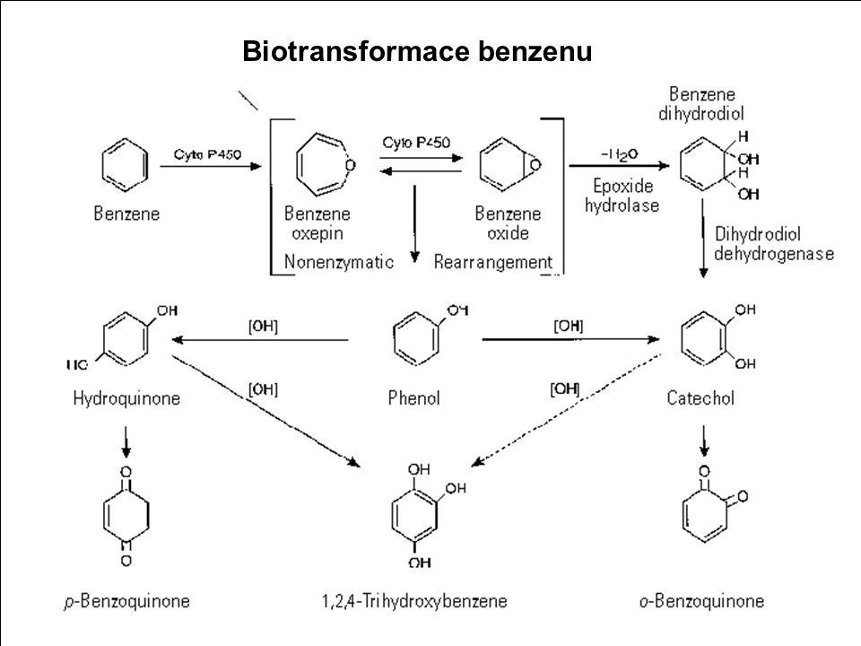 5 Benzen Toxické účinky CNS spíše akutní účinky - podobnost s akutní otravou ethanolem (nejprve euforie, pak nejistá chůze, špatná artikulace, poruchy rovnováhy, následně nevolnost, ospalost a hluboká narkóza) Imunitní systém souvisí s poškozením kostní dřeně, spíše při chronické expozici Kůže odmaštění kůže následované infekcí - vznik dermatitid Genotoxicita a karcinogenita benzen způsobuje chromosomové aberace - klastogenický účinek prokazatelně způsobuje leukémii - zhoubné bujení krevních buněk Toxické účinky benzenu v závislosti na dávce a době expozice