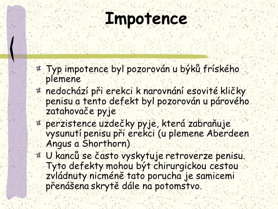 Impotence Typ impotence byl pozorován u býků fríského plemene nedochází při erekci k narovnání esovité kličky penisu a tento defekt byl pozorován u pá