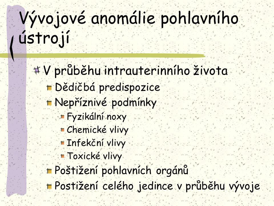 Vývojové anomálie pohlavního ústrojí V průběhu intrauterinního života Dědičbá predispozice Nepříznivé podmínky Fyzikální noxy Chemické vlivy Infekční vlivy Toxické vlivy Poštižení pohlavních orgánů Postižení celého jedince v průběhu vývoje