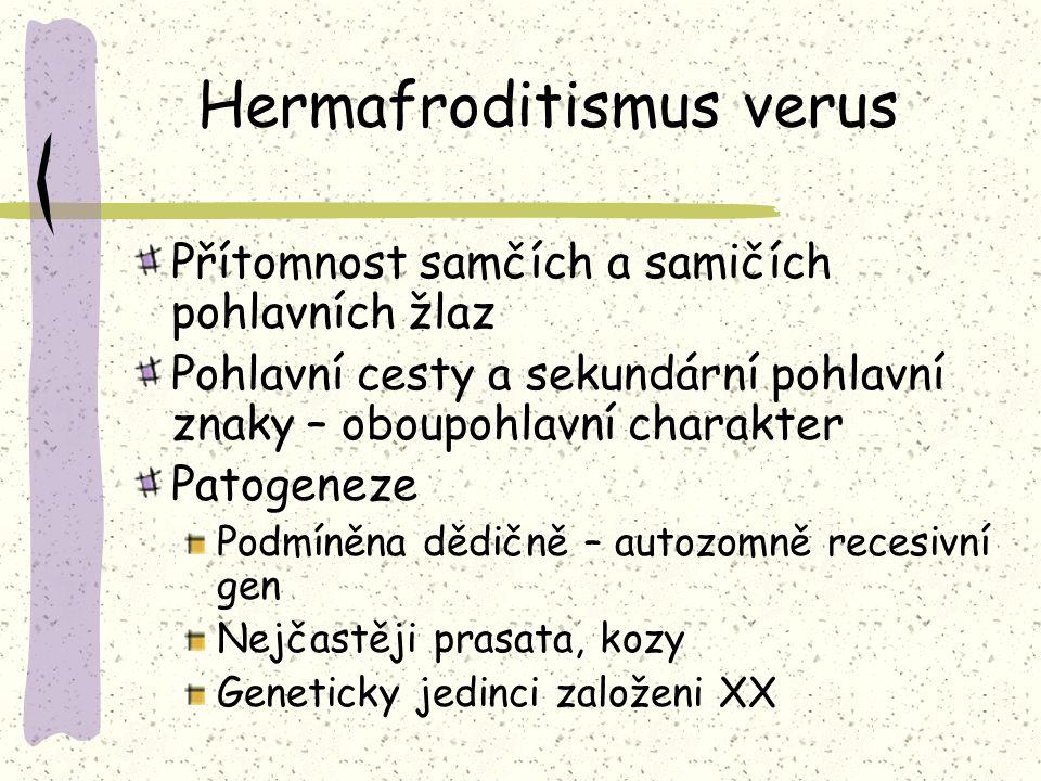 Hermafroditismus verus Přítomnost samčích a samičích pohlavních žlaz Pohlavní cesty a sekundární pohlavní znaky – oboupohlavní charakter Patogeneze Podmíněna dědičně – autozomně recesivní gen Nejčastěji prasata, kozy Geneticky jedinci založeni XX