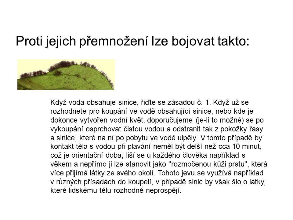 Proti jejich přemnožení lze bojovat takto: Když voda obsahuje sinice, řiďte se zásadou č.