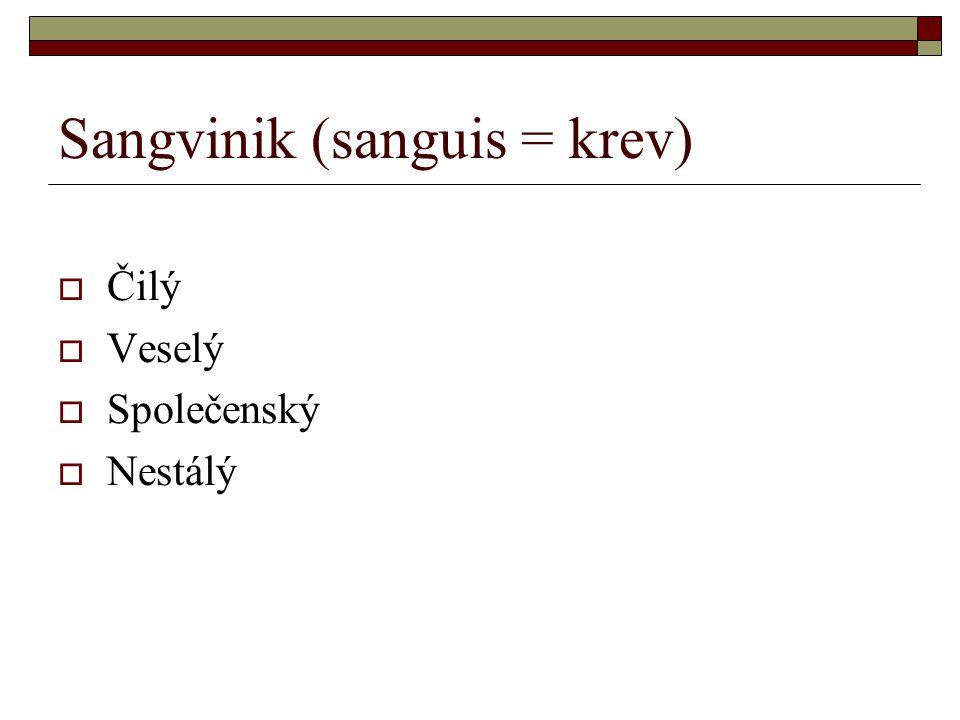 Sangvinik (sanguis = krev)  Čilý  Veselý  Společenský  Nestálý