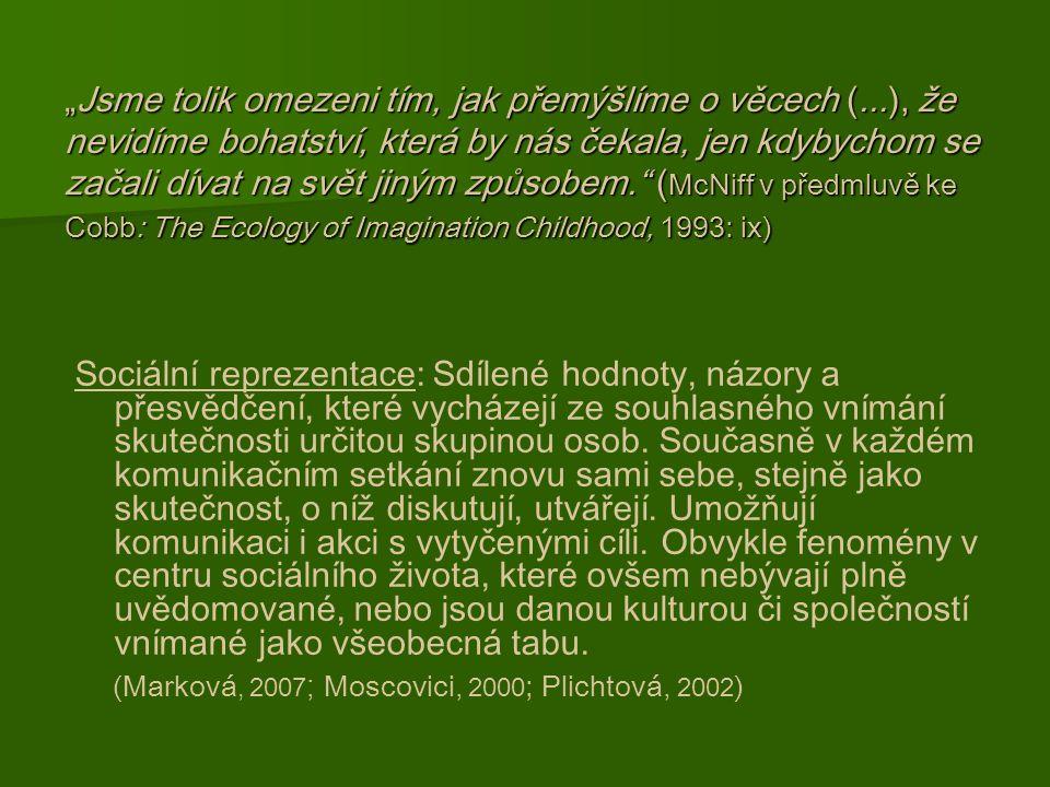 Institucionalizovaná předškolní výchova a vzdělávání v České republice.