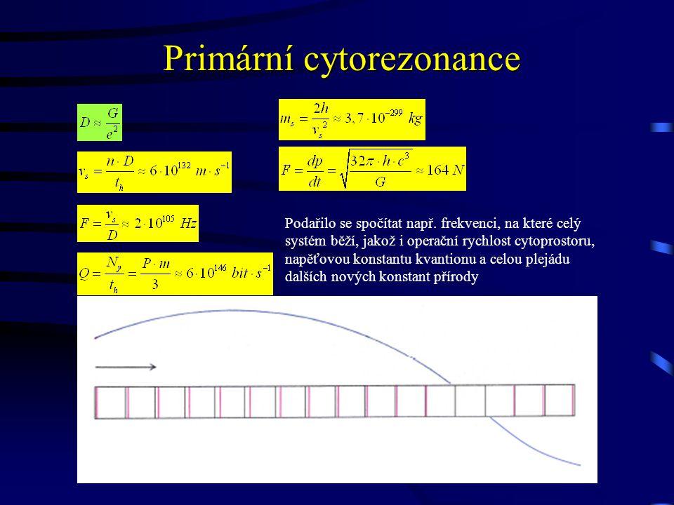 Primární cytorezonance Podařilo se spočítat např.