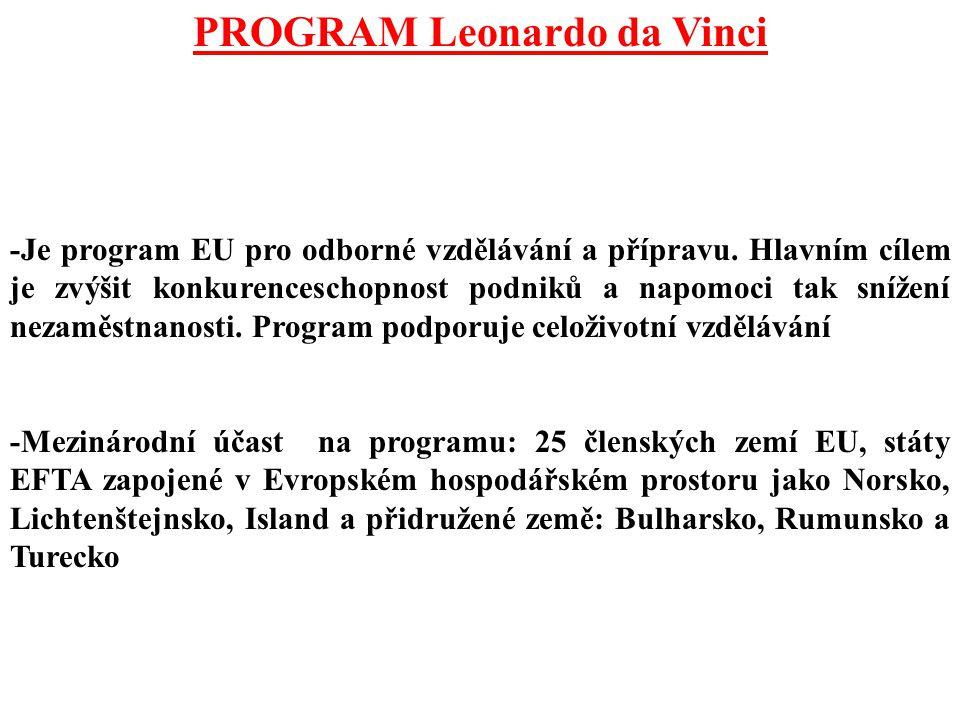 PROGRAM Leonardo da Vinci -Je program EU pro odborné vzdělávání a přípravu. Hlavním cílem je zvýšit konkurenceschopnost podniků a napomoci tak snížení
