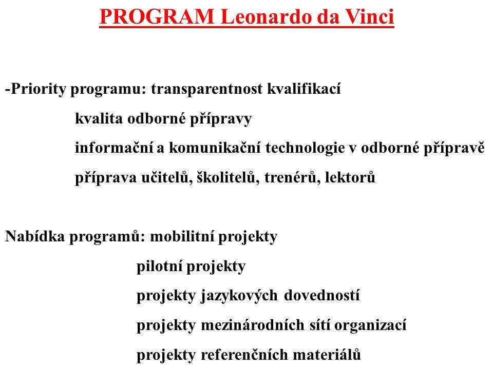 PROGRAM Leonardo da Vinci -Priority programu: transparentnost kvalifikací kvalita odborné přípravy informační a komunikační technologie v odborné přípravě příprava učitelů, školitelů, trenérů, lektorů Nabídka programů: mobilitní projekty pilotní projekty projekty jazykových dovedností projekty mezinárodních sítí organizací projekty referenčních materiálů