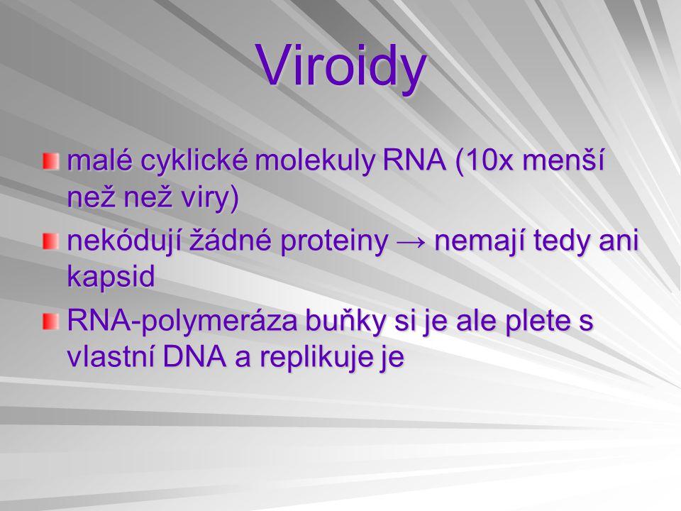 Viroidy malé cyklické molekuly RNA (10x menší než než viry) nekódují žádné proteiny → nemají tedy ani kapsid RNA-polymeráza buňky si je ale plete s vl