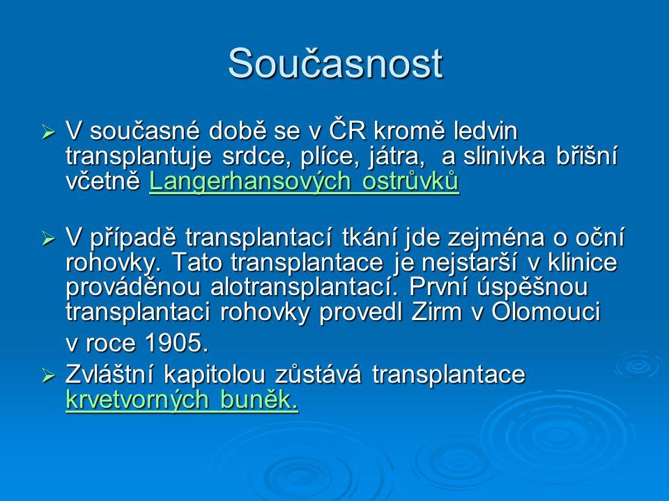 Které orgány se mohou transplantovat.