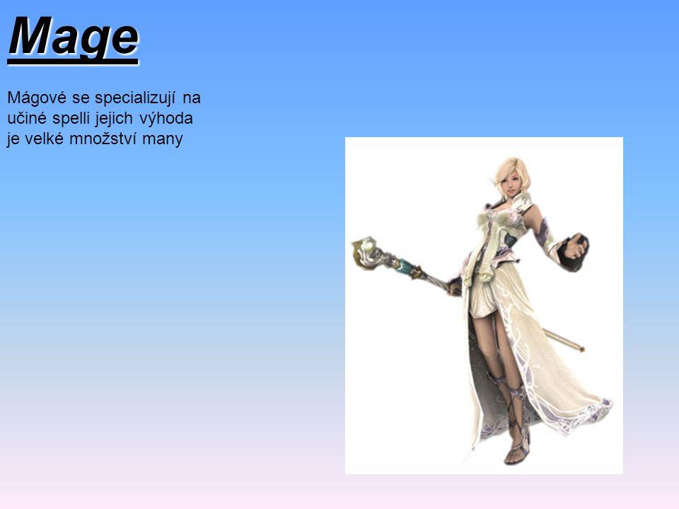 Mage Mágové se specializují na učiné spelli jejich výhoda je velké množství many
