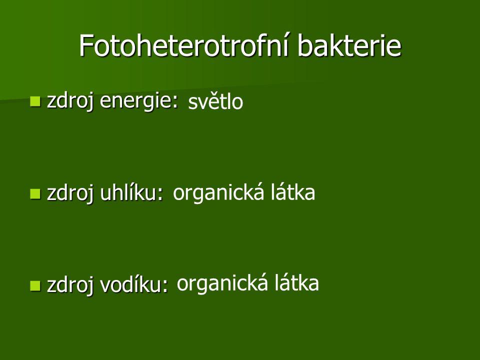 Fotoheterotrofní bakterie zdroj energie: zdroj energie: zdroj uhlíku: zdroj uhlíku: zdroj vodíku: zdroj vodíku: světlo organická látka