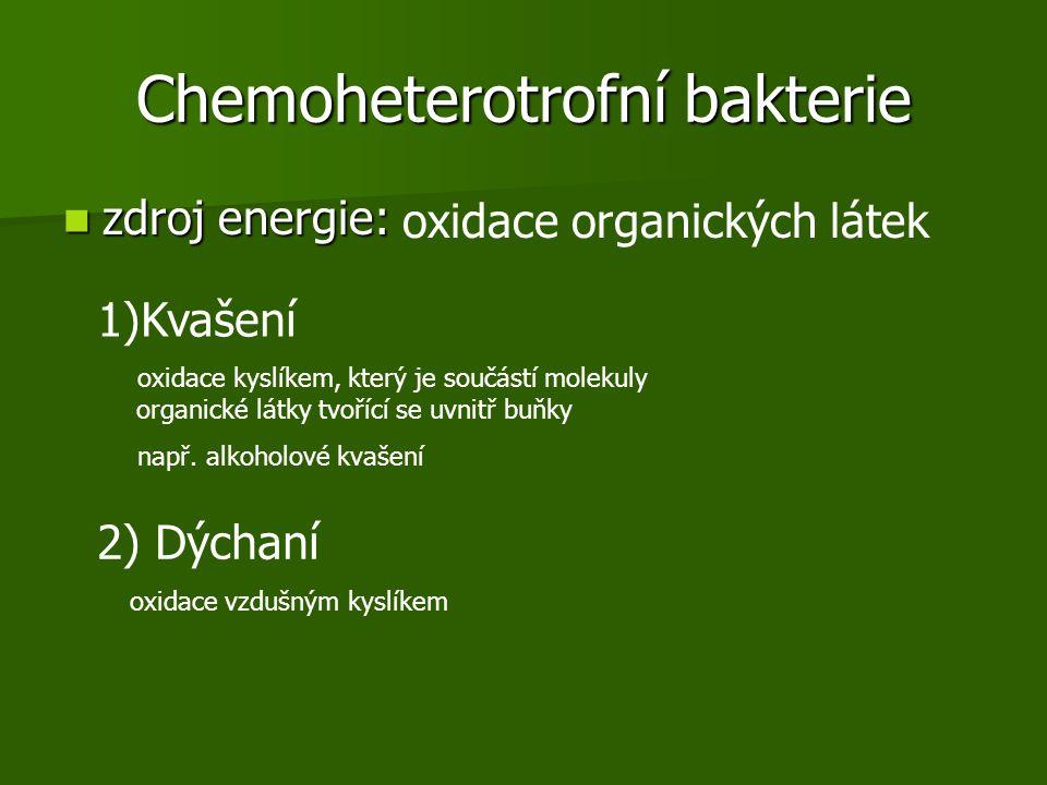 Chemoheterotrofní bakterie zdroj energie: zdroj energie: oxidace organických látek 1)Kvašení oxidace kyslíkem, který je součástí molekuly organické látky tvořící se uvnitř buňky např.