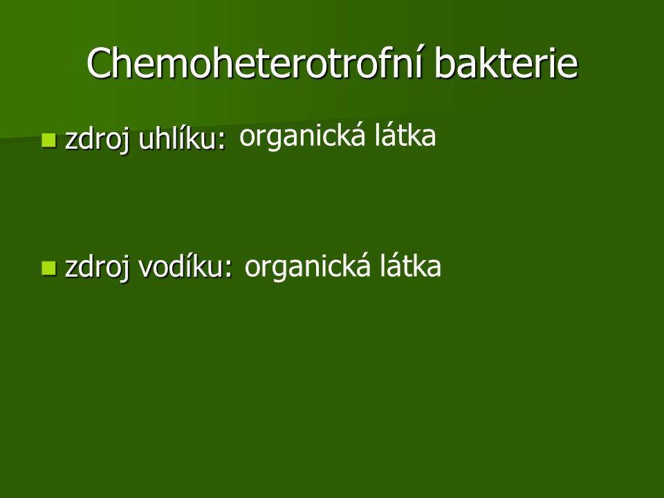 Chemoheterotrofní bakterie zdroj uhlíku: zdroj uhlíku: zdroj vodíku: zdroj vodíku: organická látka