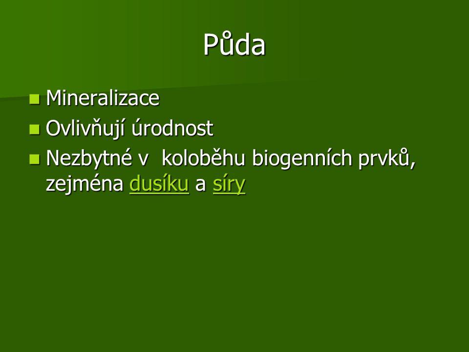 Půda Mineralizace Mineralizace Ovlivňují úrodnost Ovlivňují úrodnost Nezbytné v koloběhu biogenních prvků, zejména dusíku a síry Nezbytné v koloběhu biogenních prvků, zejména dusíku a sírydusíkusírydusíkusíry