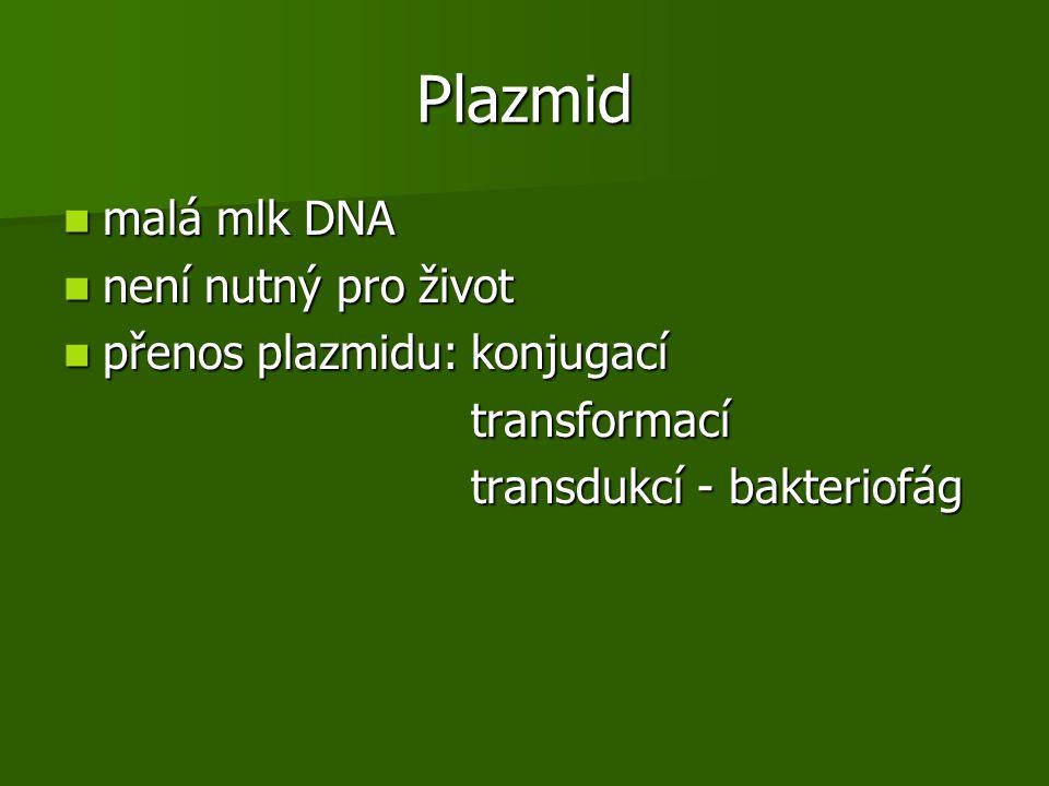 Plazmid malá mlk DNA malá mlk DNA není nutný pro život není nutný pro život přenos plazmidu: konjugací přenos plazmidu: konjugací transformací transformací transdukcí - bakteriofág transdukcí - bakteriofág