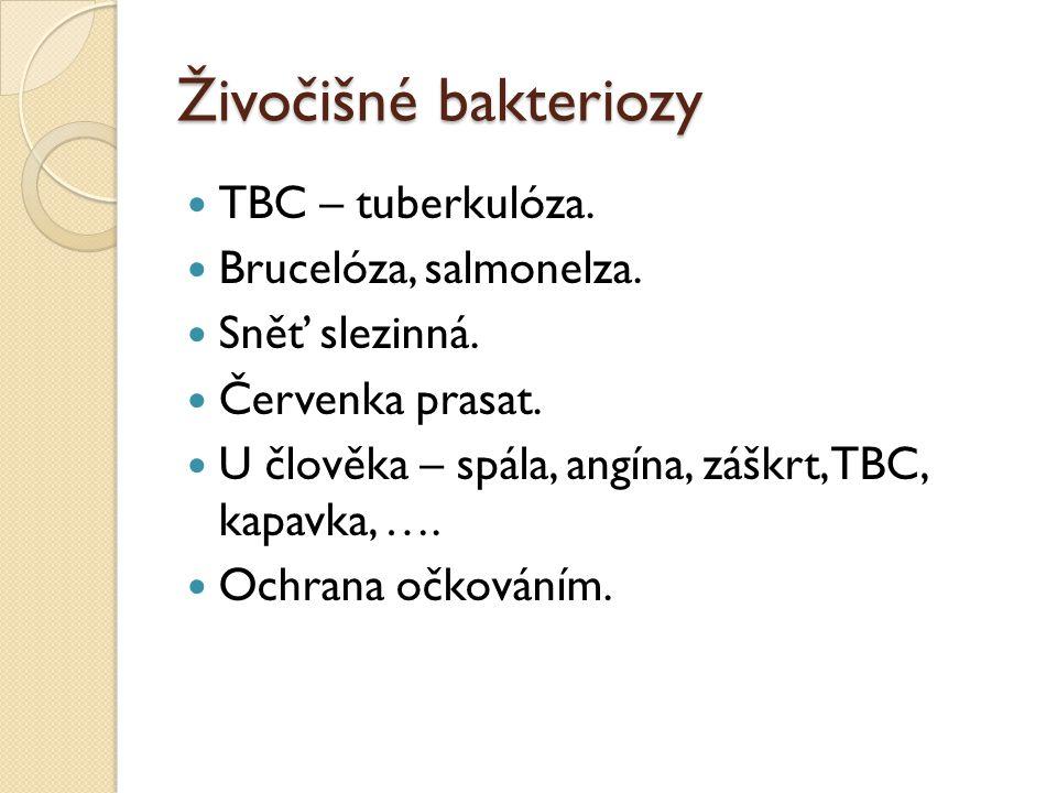 Živočišné bakteriozy TBC – tuberkulóza.Brucelóza, salmonelza.