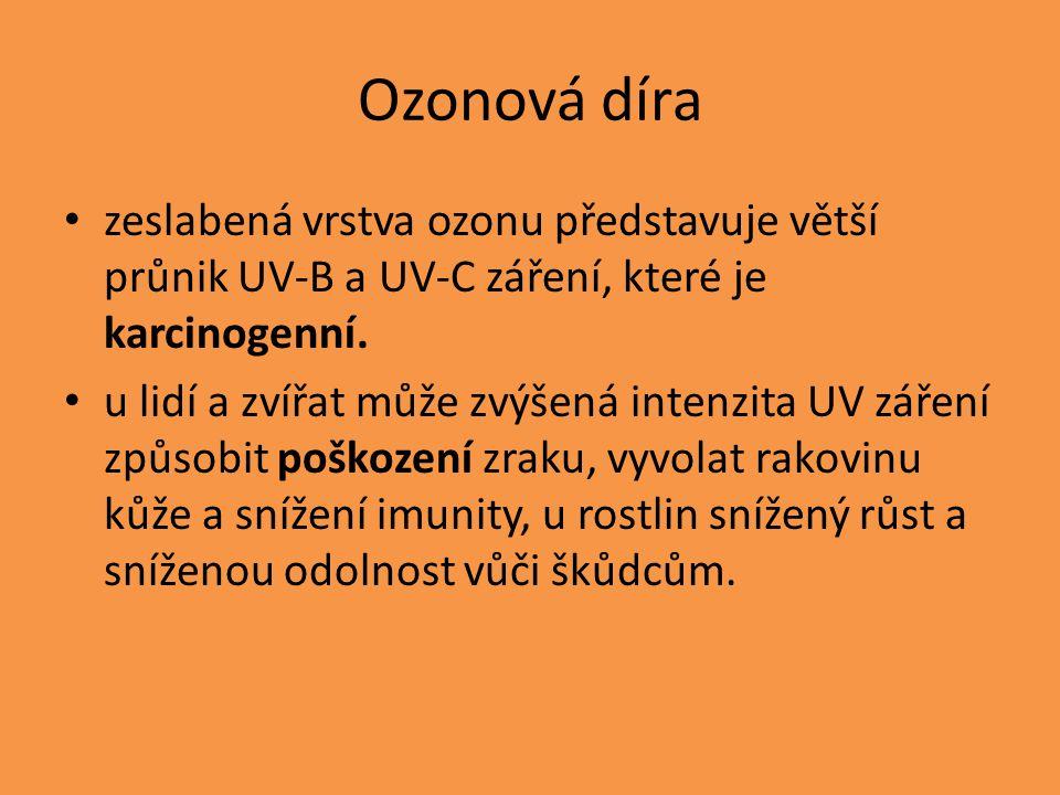 Ozonová díra zeslabená vrstva ozonu představuje větší průnik UV-B a UV-C záření, které je karcinogenní. u lidí a zvířat může zvýšená intenzita UV záře