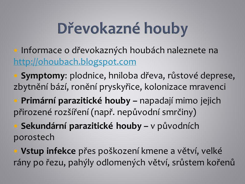 Informace o dřevokazných houbách naleznete na http://ohoubach.blogspot.com http://ohoubach.blogspot.com Symptomy: plodnice, hniloba dřeva, růstové dep