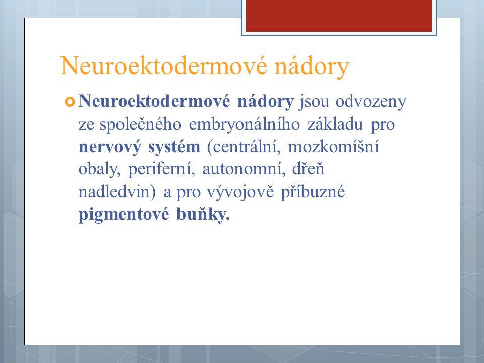 Neuroektodermové nádory  Neuroektodermové nádory jsou odvozeny ze společného embryonálního základu pro nervový systém (centrální, mozkomíšní obaly, p