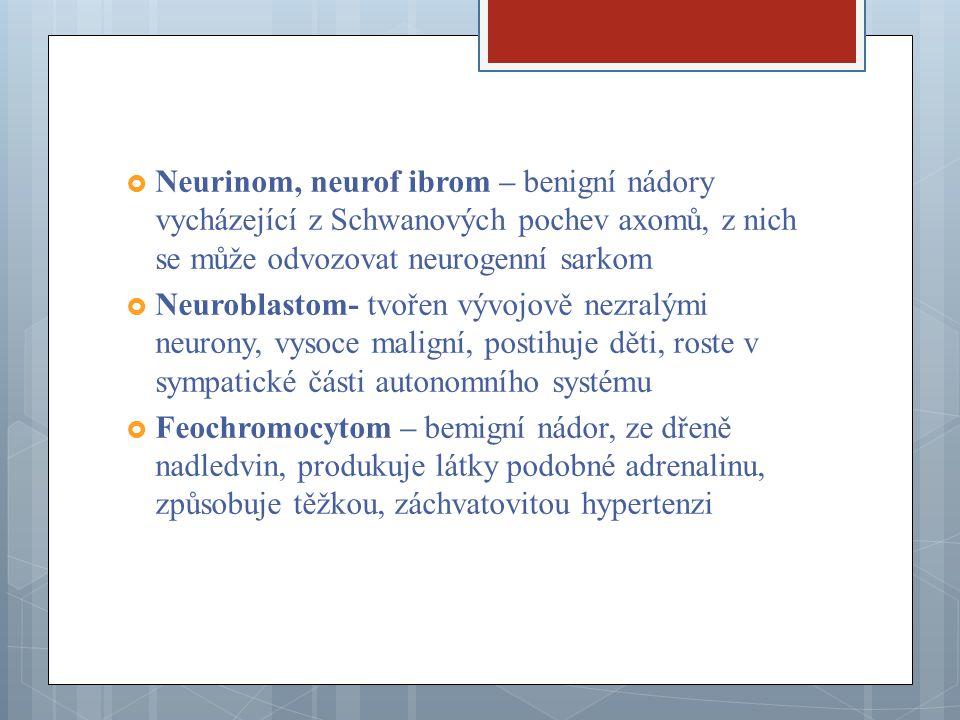  Neurinom, neurof ibrom – benigní nádory vycházející z Schwanových pochev axomů, z nich se může odvozovat neurogenní sarkom  Neuroblastom- tvořen vý