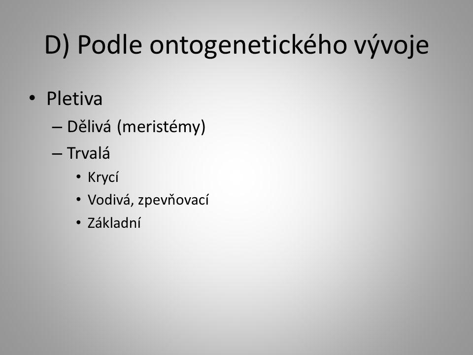 D) Podle ontogenetického vývoje Pletiva – Dělivá (meristémy) – Trvalá Krycí Vodivá, zpevňovací Základní