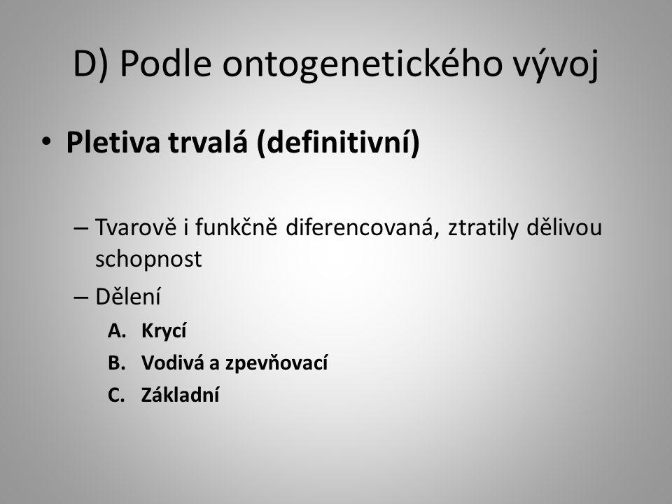 D) Podle ontogenetického vývoj Pletiva trvalá (definitivní) – Tvarově i funkčně diferencovaná, ztratily dělivou schopnost – Dělení A.Krycí B.Vodivá a zpevňovací C.Základní