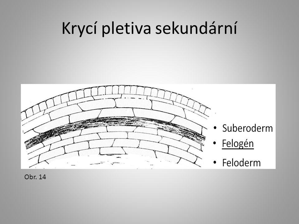 Krycí pletiva sekundární Obr. 14
