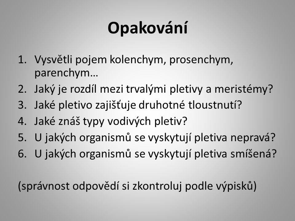 Opakování 1.Vysvětli pojem kolenchym, prosenchym, parenchym… 2.Jaký je rozdíl mezi trvalými pletivy a meristémy.