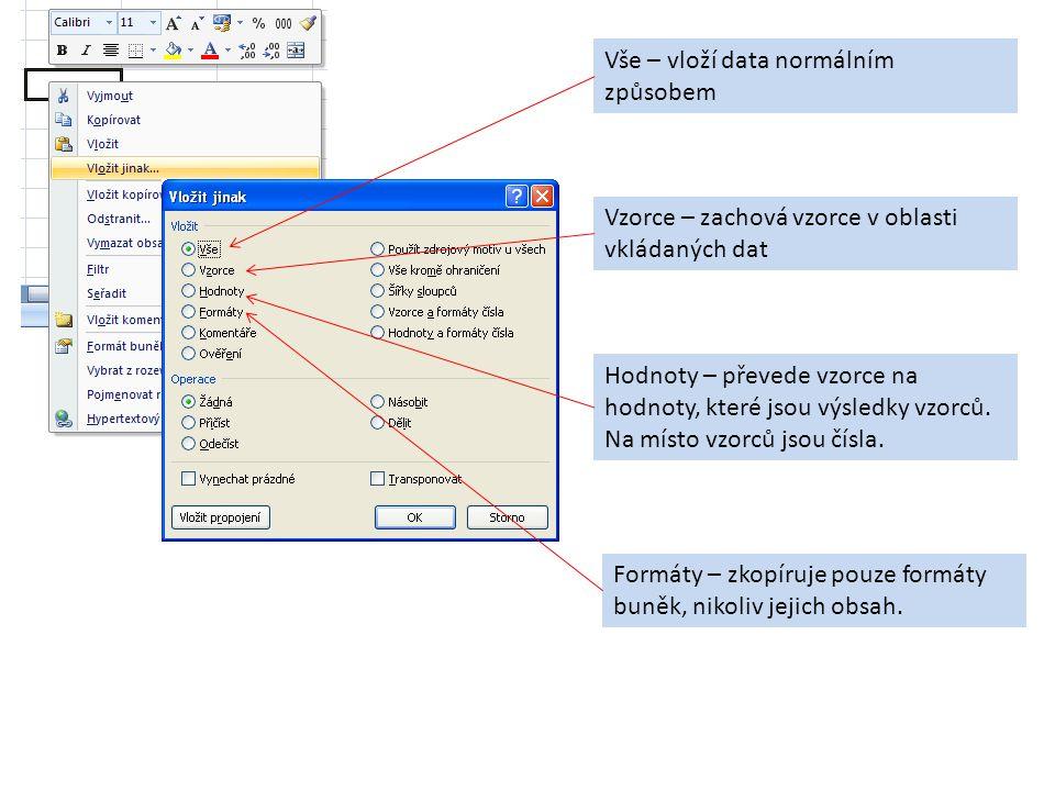 Vše – vloží data normálním způsobem Vzorce – zachová vzorce v oblasti vkládaných dat Hodnoty – převede vzorce na hodnoty, které jsou výsledky vzorců.