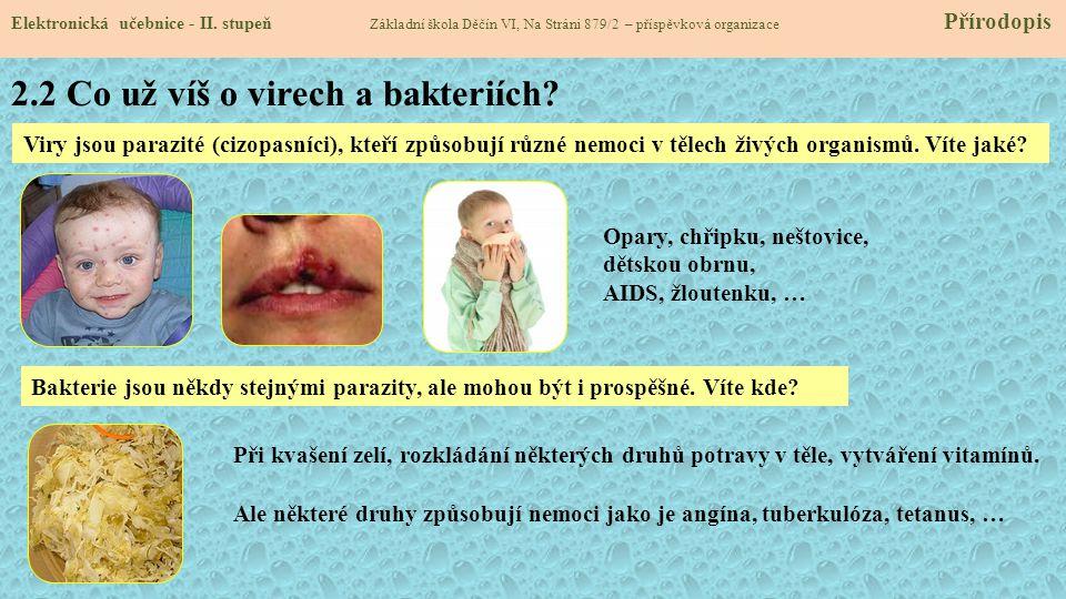 2.2 Co už víš o virech a bakteriích? Elektronická učebnice - II. stupeň Základní škola Děčín VI, Na Stráni 879/2 – příspěvková organizace Přírodopis V