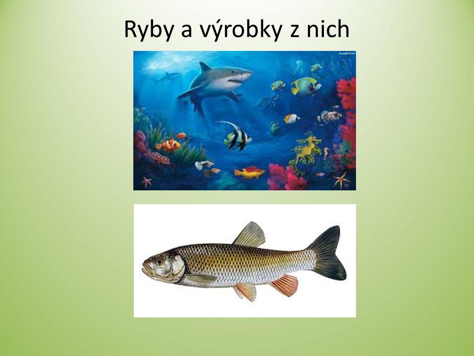 Ryby a výrobky z nich