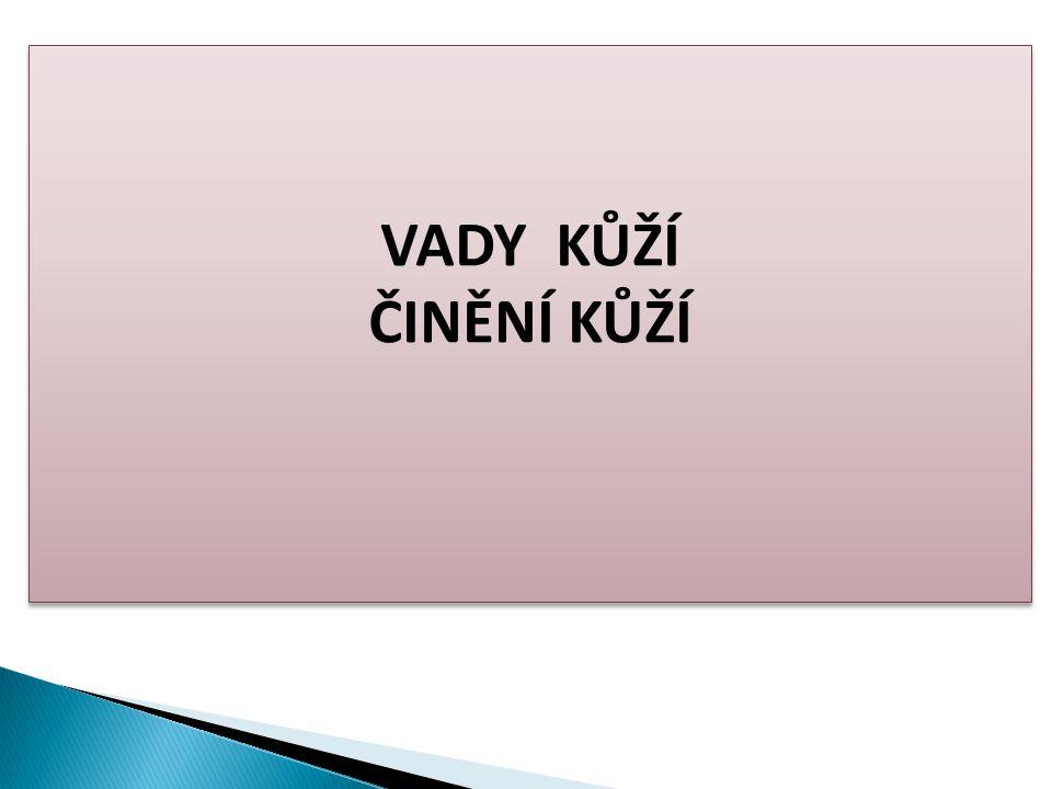 VADY KŮŽÍ ČINĚNÍ KŮŽÍ