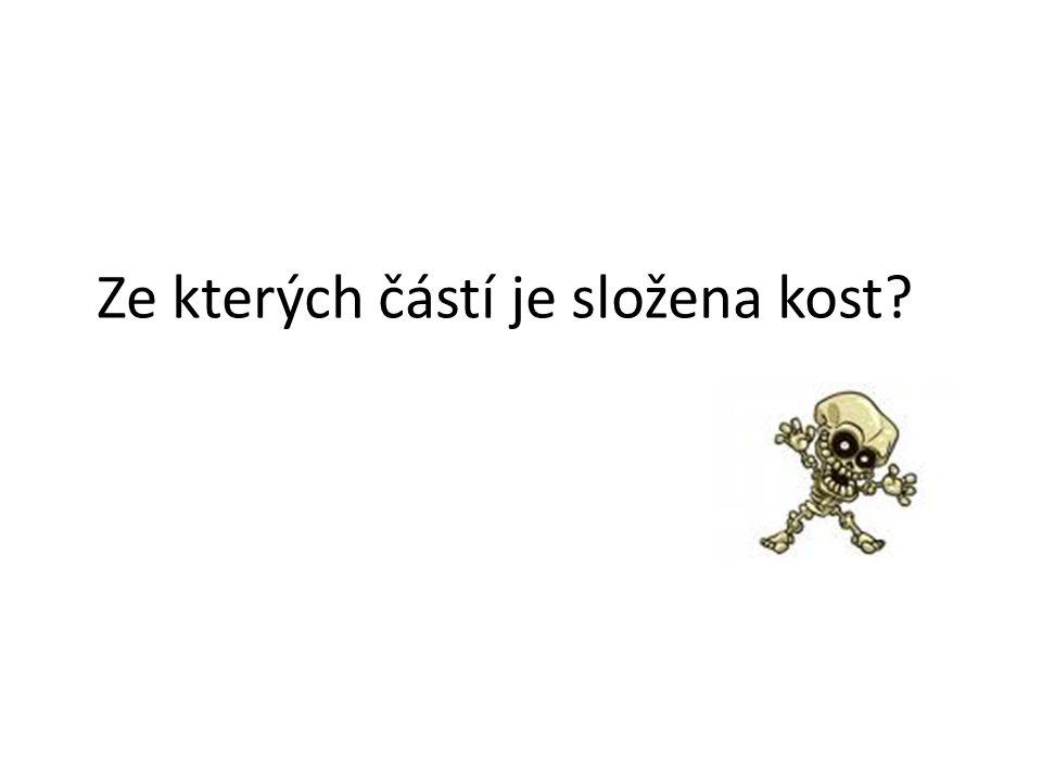 babovakova.estranky.cz
