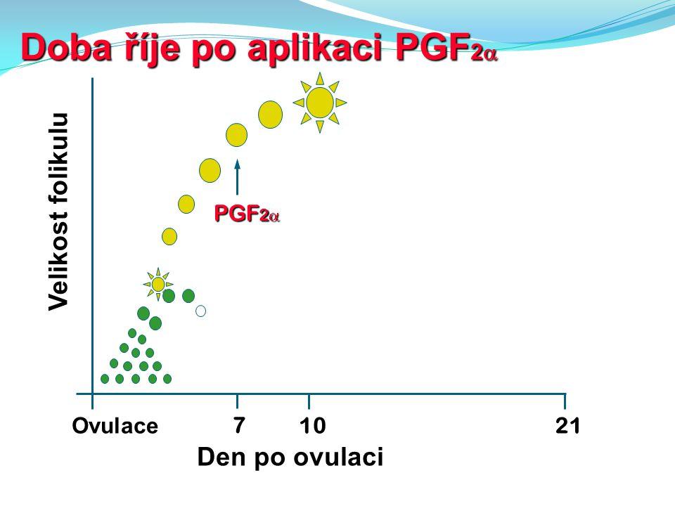 Doba říje po aplikaci PGF 2  10 Ovulace Velikost folikulu Den po ovulaci 7 PGF 2  21