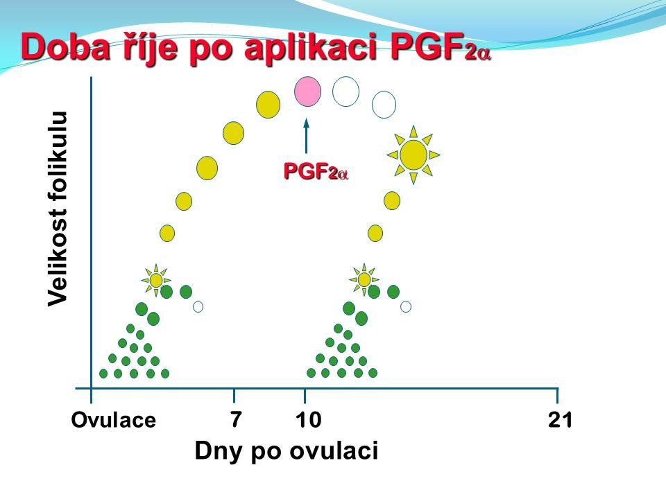 Doba říje po aplikaci PGF 2  10 Ovulace Velikost folikulu Dny po ovulaci 7 PGF 2  21