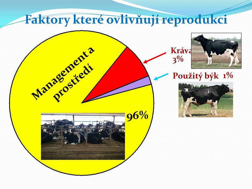 Kráva Použitý býk Faktory které ovlivňují reprodukci 3% 1% Management a prostředí 96%