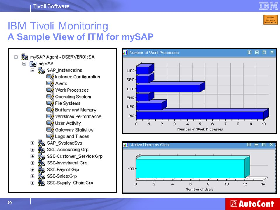 Tivoli Software 29 IBM Tivoli Monitoring A Sample View of ITM for mySAP