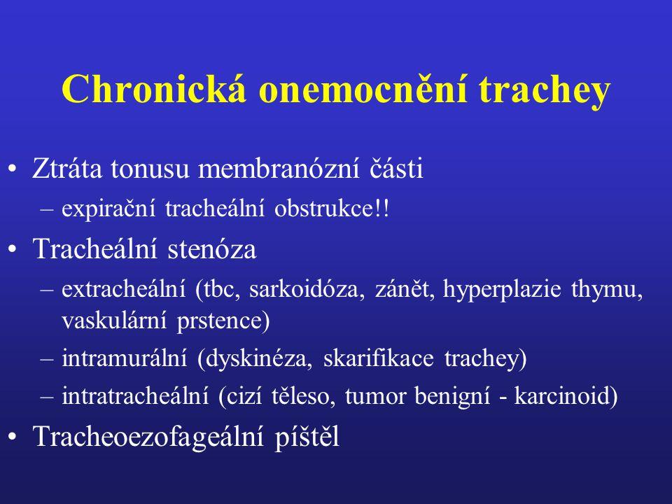 Idiopatická plicní hemosideróza Dg.
