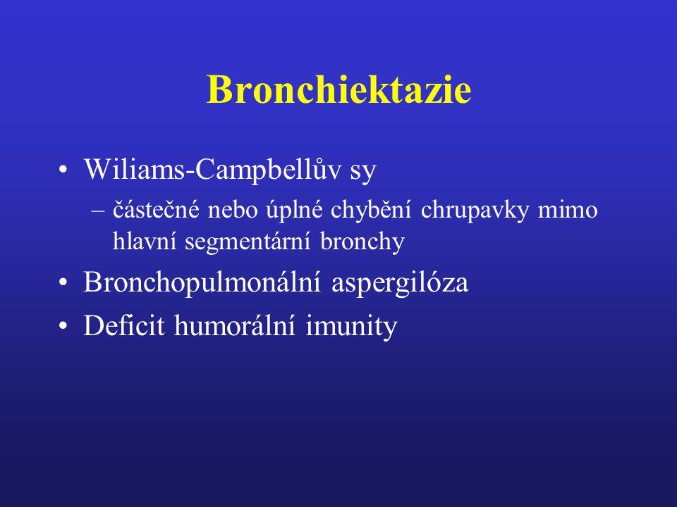 Primární ciliární dyskineza Asi u 11% dětí s chronickými respiračními chorobami Kartagenerův sy (1930) – Afzelius (1976) –1 : 15.000 - 20.000 porodů Youngův sy –obstrukční azoospermie, normálné spermatogeneze, chronické simopulmonální infekce Sy žlutých nehtů – hypoplazie lymfatického sytému, ztluštělé žlutozelené nehty, lymfedém, bronchiektazie, exsudativní pleuritida