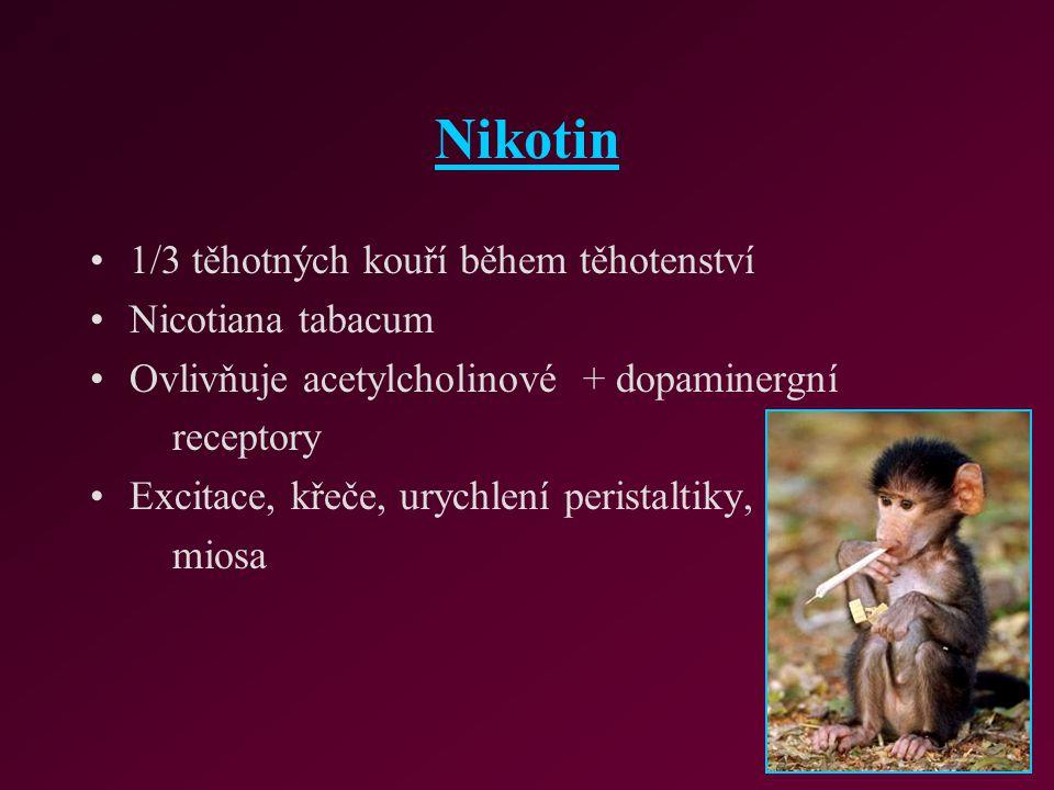 Nikotin 1/3 těhotných kouří během těhotenství Nicotiana tabacum Ovlivňuje acetylcholinové + dopaminergní receptory Excitace, křeče, urychlení peristal