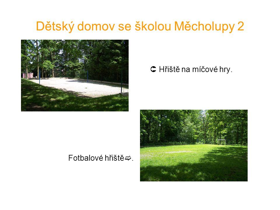 Dětský domov se školou Měcholupy 2  Hřiště na míčové hry. Fotbalové hřiště .