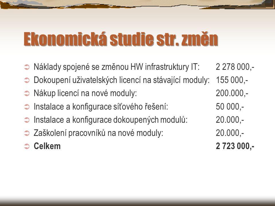 Ekonomická studie str.